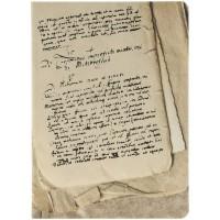 Ежедневник «Рукописи»