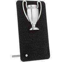 Награда Triumph Silver