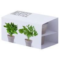 Набор  ADVERT: два горшочка для выращивания петушки и мяты с семенами